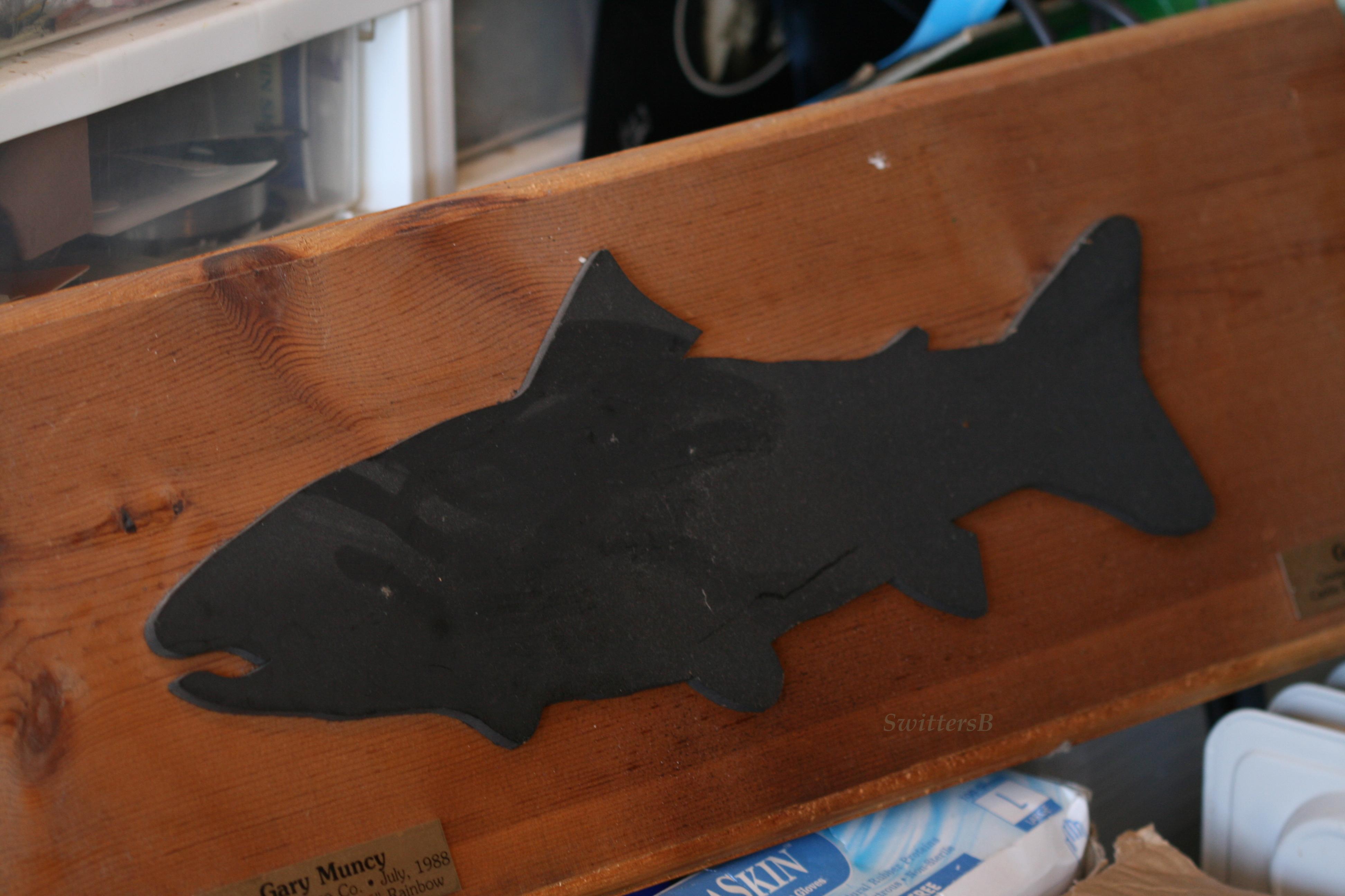 plaque fish