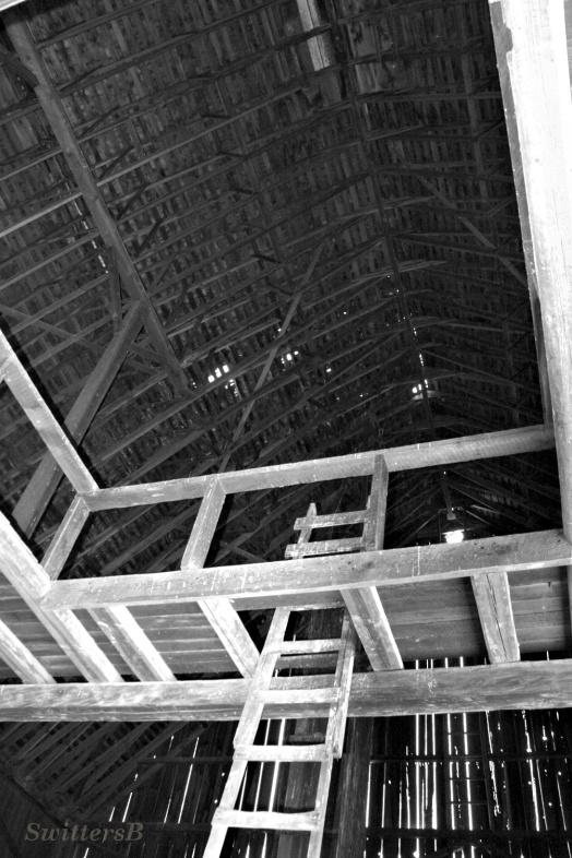 Ceiling Barn SB