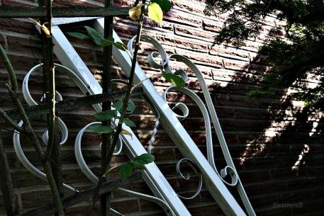 Garden2 SB