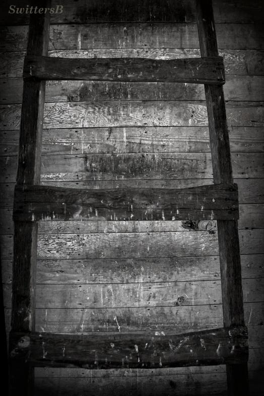 Worn Ladder SB