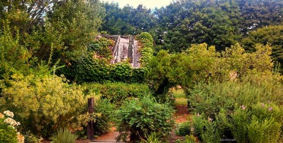Lush Garden SB