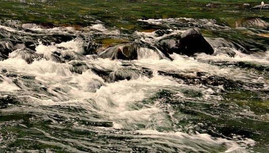 rapids SB