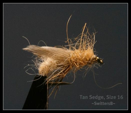 Tan Sedge SwittersB