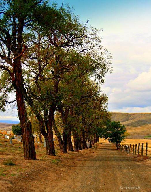 Cem Road SB