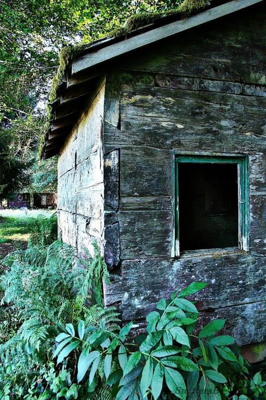 corner old cabin SB