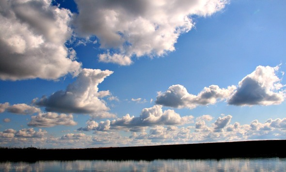 October Sky 2 SB