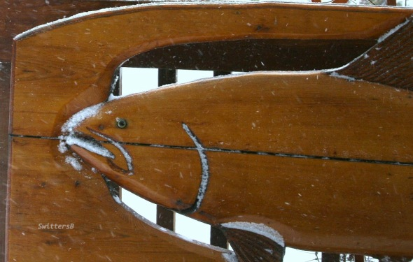 fish bench snow SB