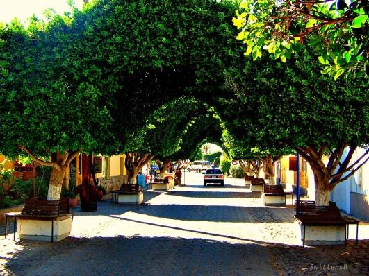 loreto street swittersb
