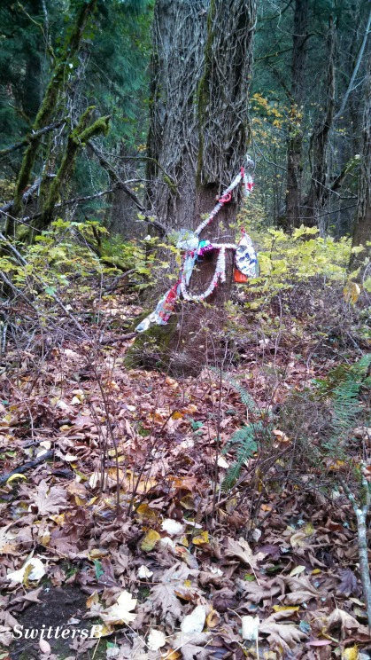 marker in the woods SB