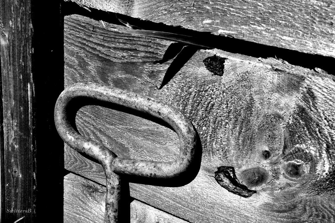 Old Handle Fence SB