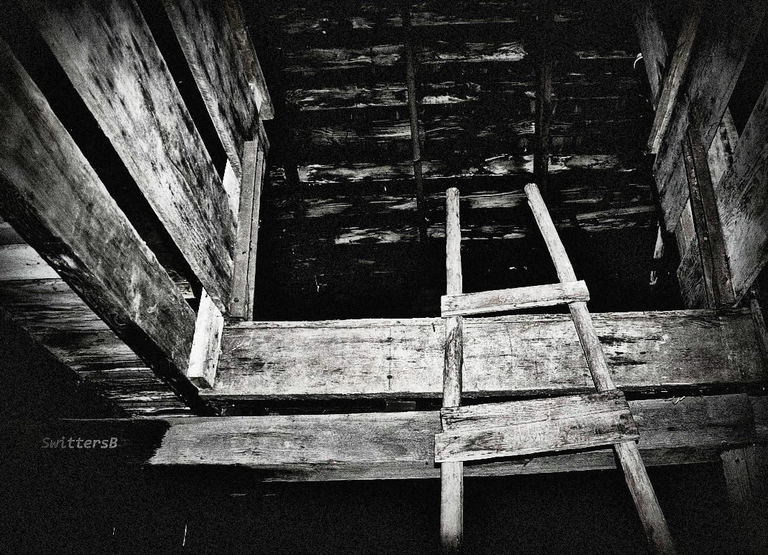 old ladder bar  swittersb