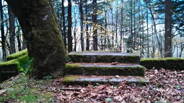 Stairway to SwittersB