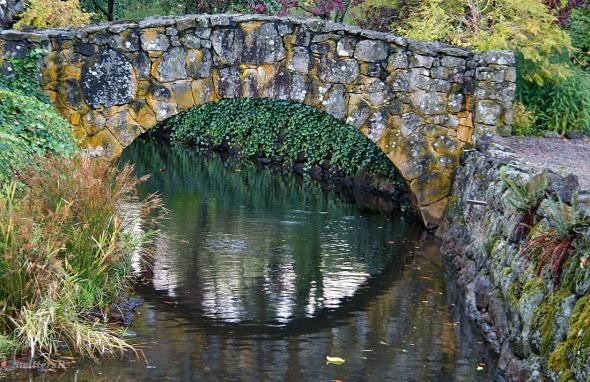 stone bridge brook SwittersB