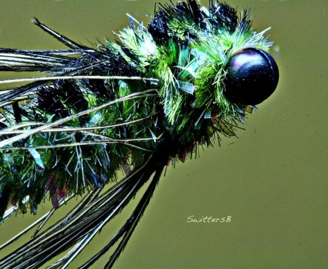 dragon eyes light SwittersB
