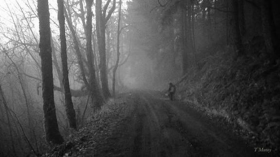 Foggy Walk ™ SwittersB