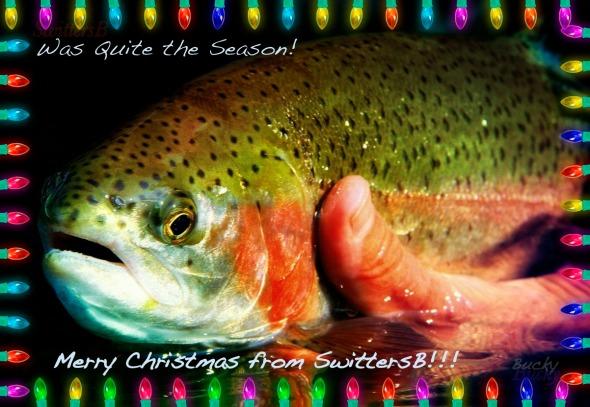 Merry Christmas SwittersB Bucky