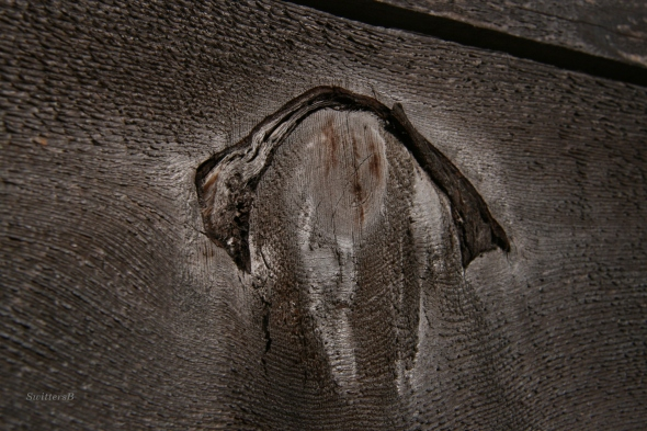 Plank Knot SwittersB