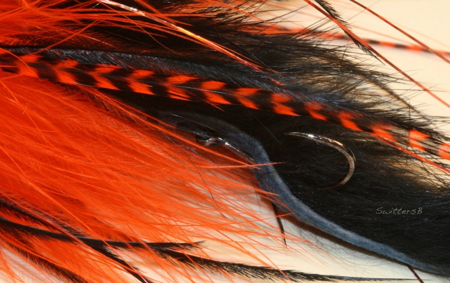 Spey Fly Stinger