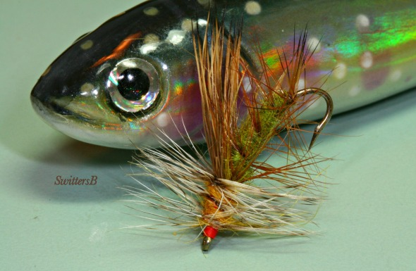 Stimulator & Trout SwittersB