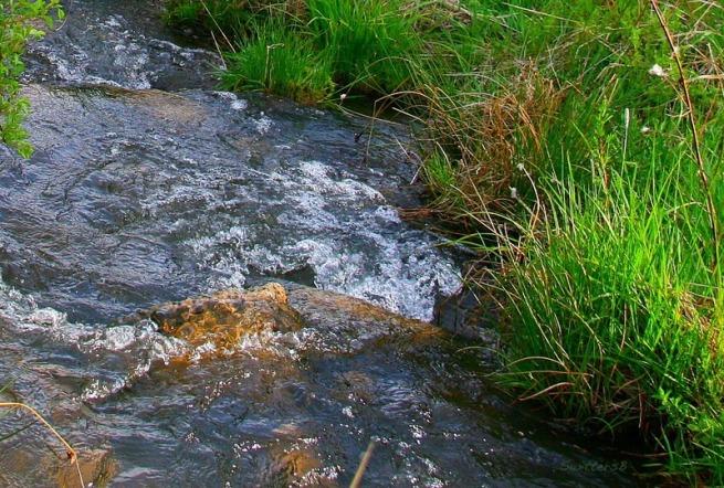 babbling brook sb