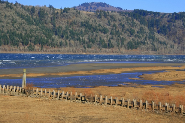 Columbia River low and windy SB