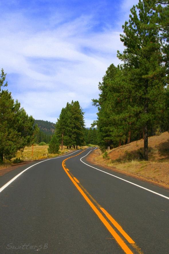 Open Road 1 SwittersB