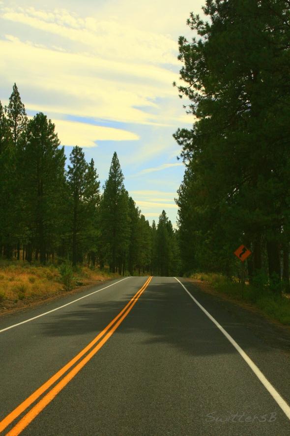 Open Road 2 SwittersB