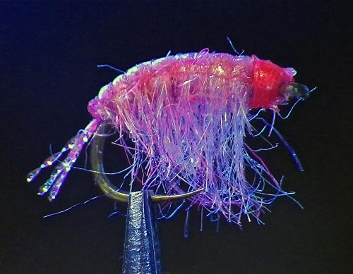 pinko-uv2-ob-scud-1
