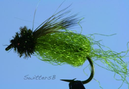 Sparkle Pupa SB2