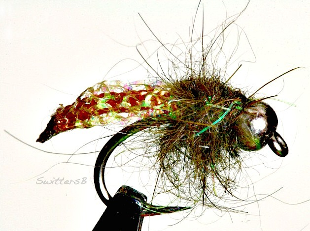 tan caddis pupa swittersb