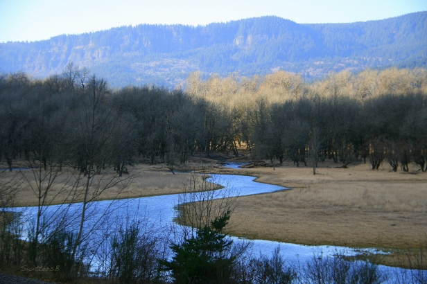 Wetland2SB