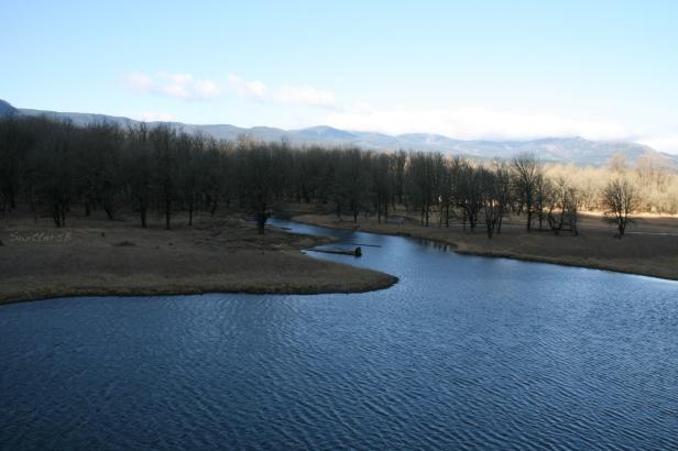 wetland3SB