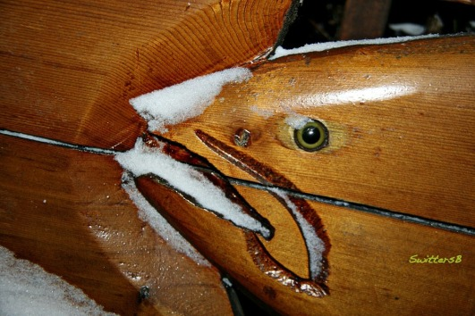 Fish Eye Snow SwittersB