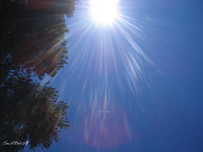 Radiance On High SwittersB