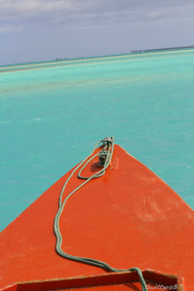 swittersb photography red boat tropical