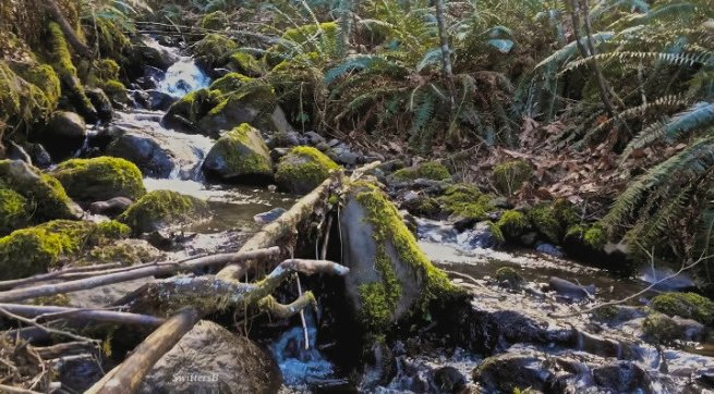 photography-nature-brook-Cascades-SwittersB