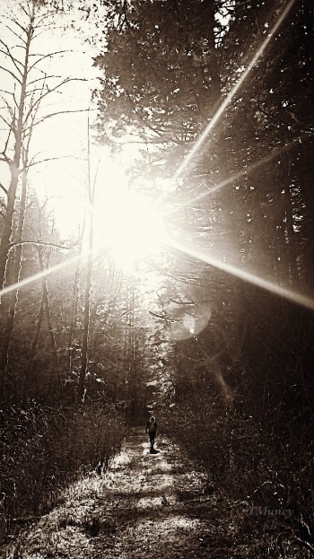 Photography-Path-Sunspot-Trail-TMuncy-SwittersB