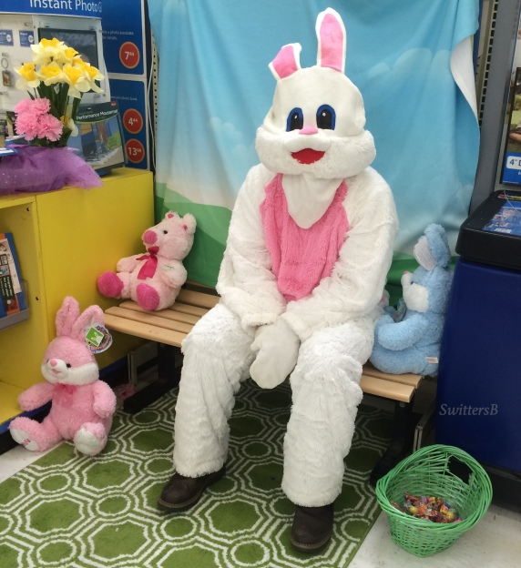 Easter Bunny SwittersB