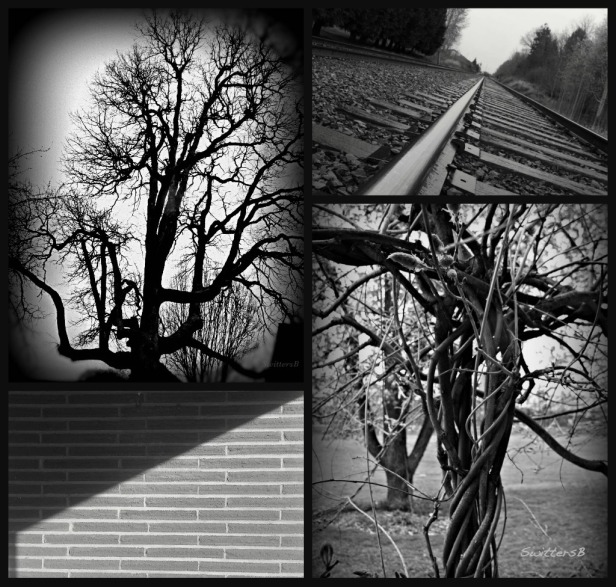 photography-lines-twisted-SwittersB
