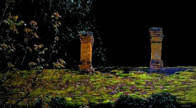 photography-moonlight-mossy roof-Switters
