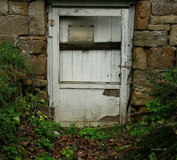 Photography-Old Cellar-Back Door-Mysterious-SwittersB