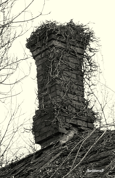 photography-old chimney-brick-topple-SwittersB