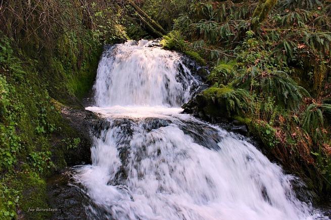 Photography-Oregon-Shepperd's Dell Falls-Joe Berentsen-SwittersB