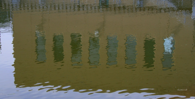 photography-reflections-water-Oregon-SwittersB