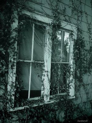 photography-SwittersB-old windows-farm house-Oregon
