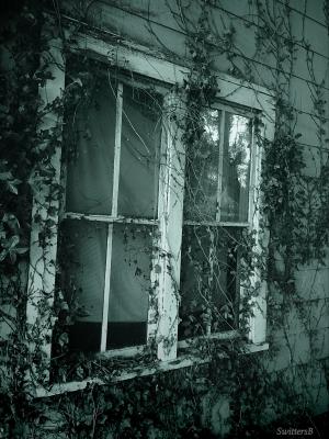 photography-SwittersB-old windows-farm house-Oregon