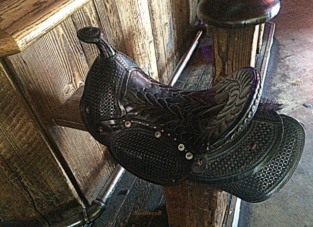 photography-barstool-saddle-tavern-SwittersB