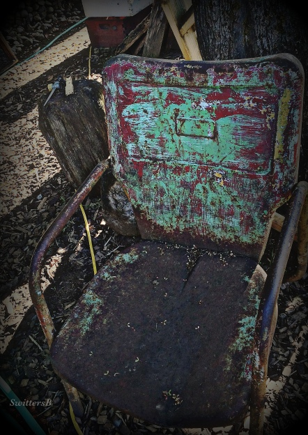 photography-gardening-old metal chair-vintage-SwittersB