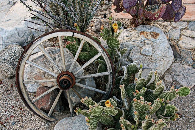 photography-hermitage-desert-SwittersB-wagon wheel