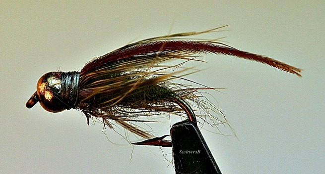photography--macro-caddis pupa-fly tying-SwittersB